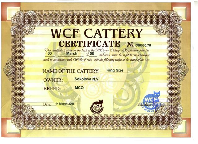 WCD cattery sertificate  King Size